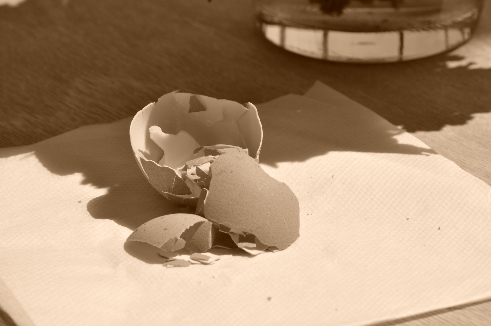 Eierschaden