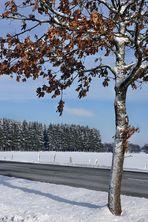 """""""Eifel-Winter 1"""""""