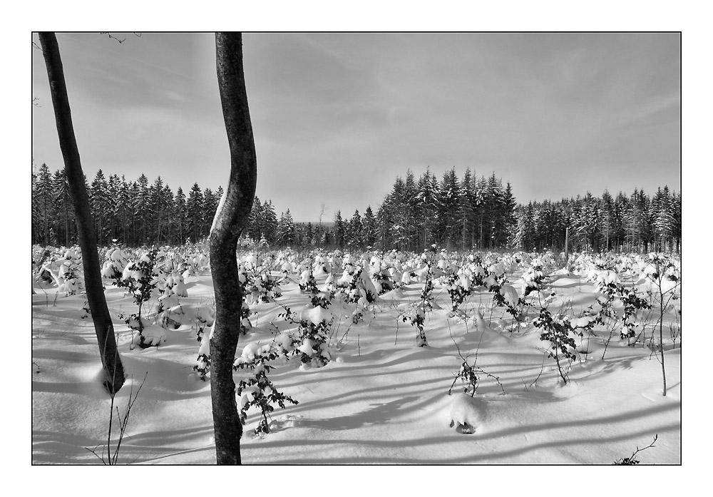 """""""Eifel-Winter 2"""""""