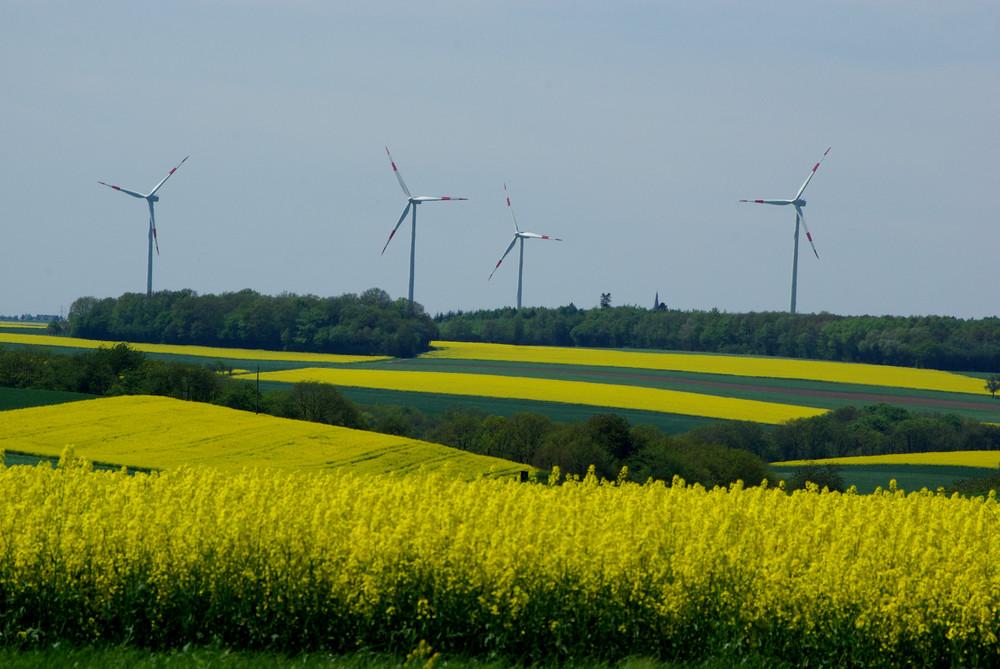 """Eifellandschaft mit """"Windmühlen unserer Zeit"""""""