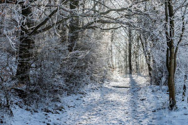 *Eifelsteig-Winter*