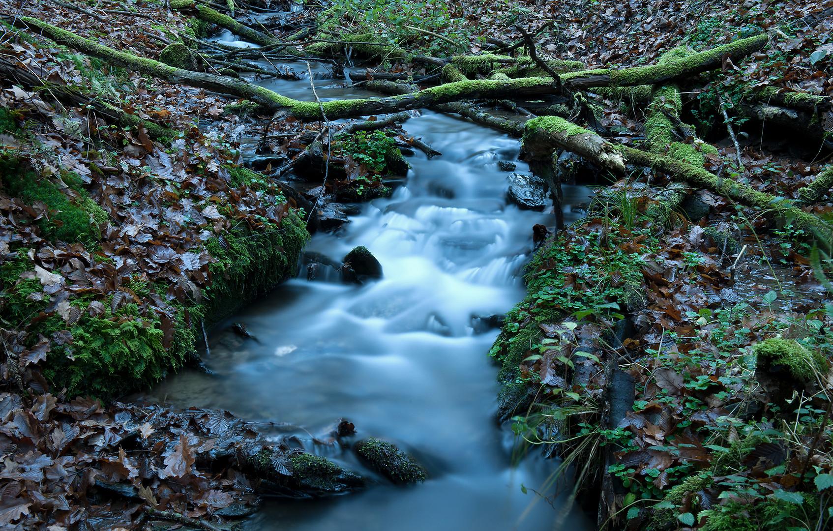 Eifelwasser #2