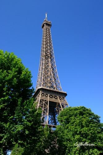 Eiffelturm im grünen.