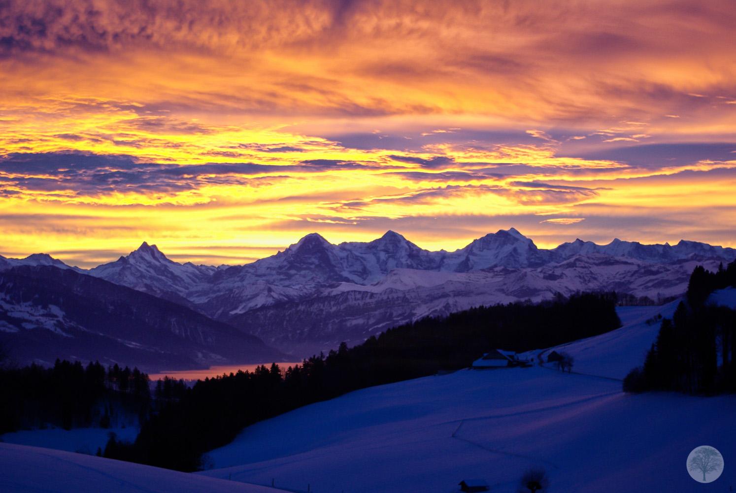 Eiger - Mönch - Jungfrau am Morgen