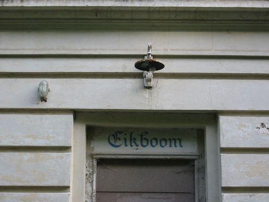 Eikboom