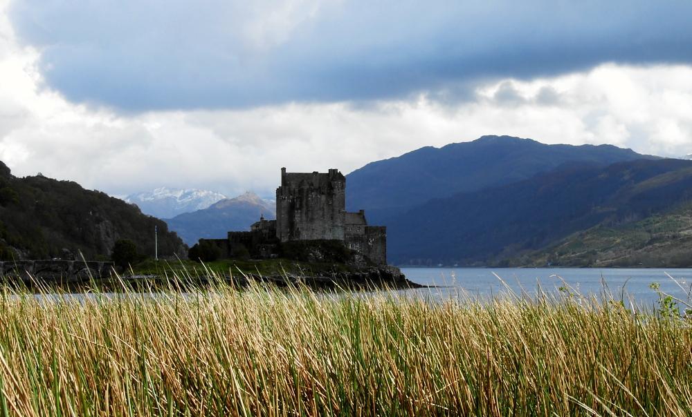 Eilean Donan Castle durchs Schilfgras oder was immer das auch ist