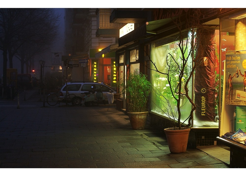 Eimsbush: Foggy Lights