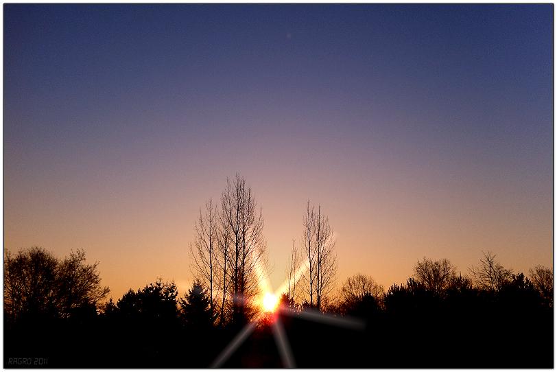 Ein a....kalter Februarmorgen