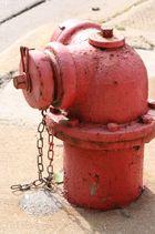 ein alter Hydrant oder Hundetoilette