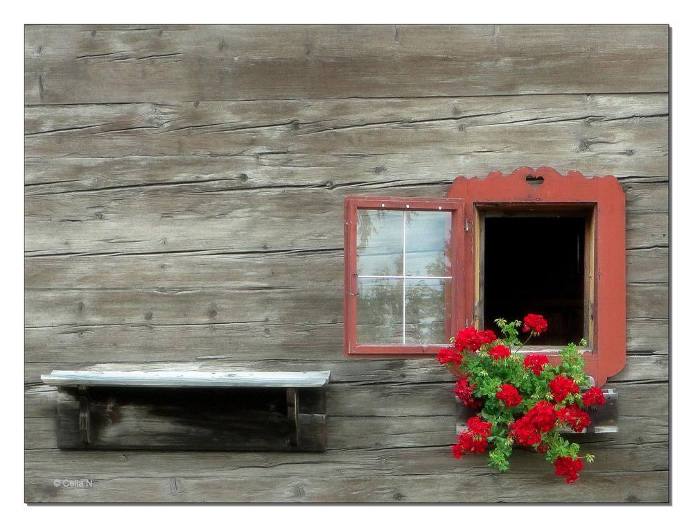 Altes Fenster ein altes fenster foto bild architektur ländliche architektur