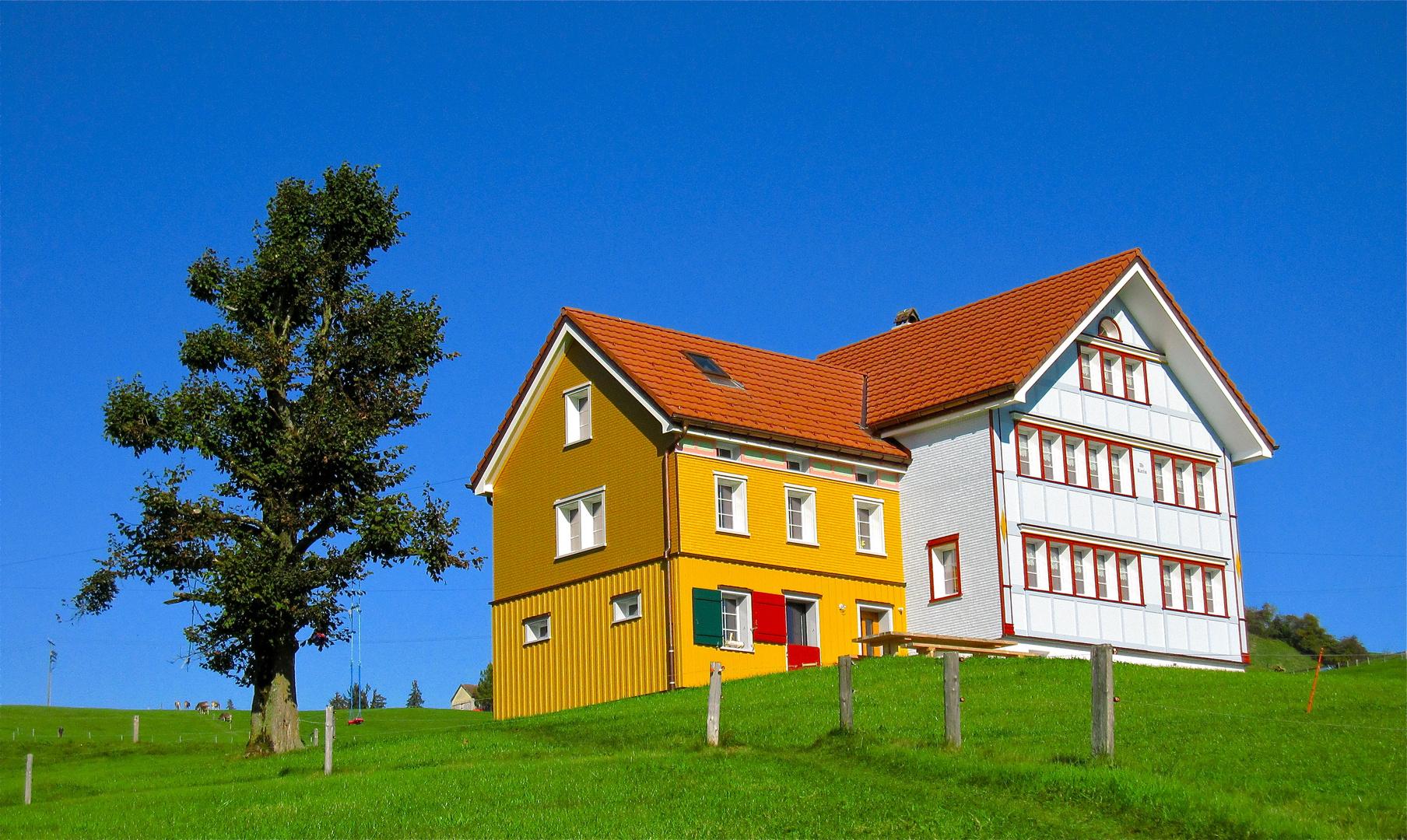 Ein Appenzeller-Haus wie es im Buche steht. Ein Bilderbuch-Appenzellerhaus
