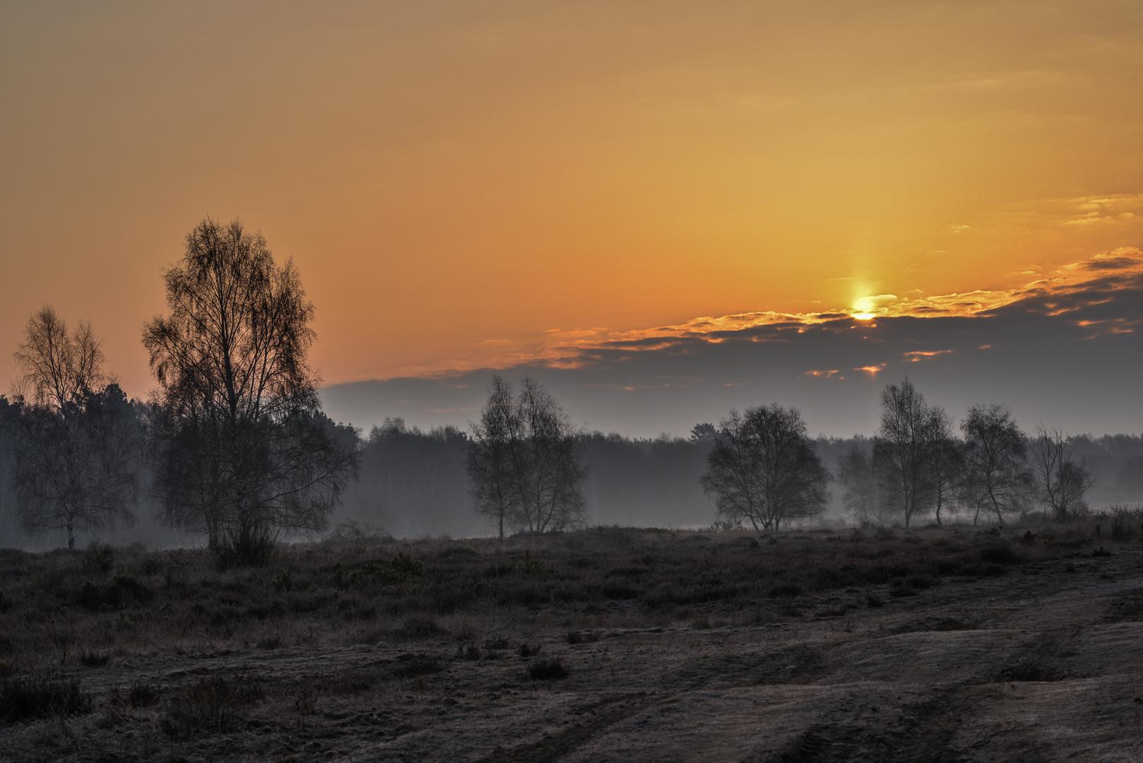 Ein Aprilmorgen