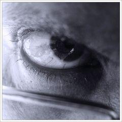 Ein Auge eines Users von 11000 Usern der Fotocommunity