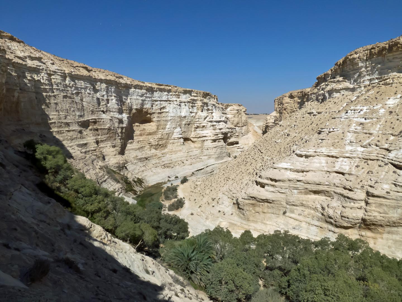 Ein Avdat-Nationalpark 1