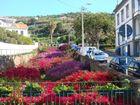 Ein Bach mitten durch Santa Cruz / Madeira