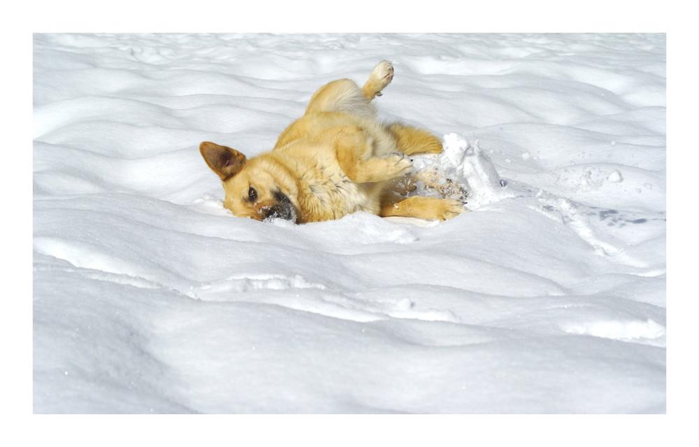 Ein Bad im Schnee