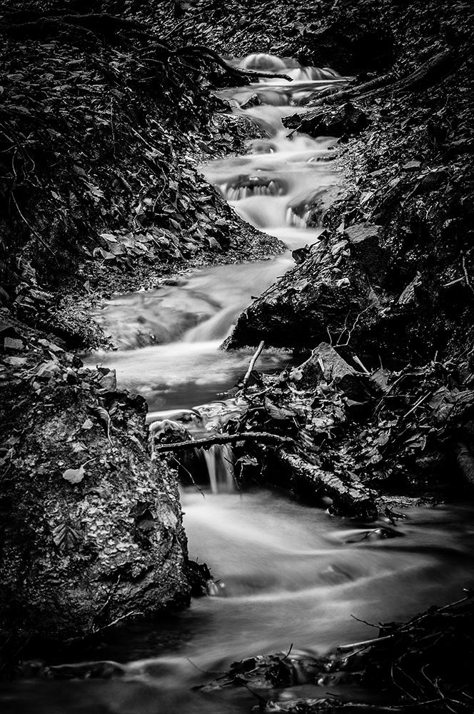 Ein Bächlein fließt im Walde ...