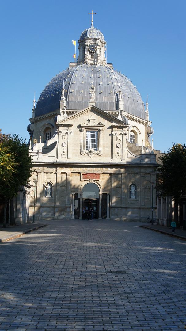 Ein Basiliek aus Belgien