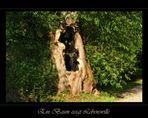 Ein Baum zeigt Lebenswille