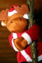 Ein besoffener Weihnachtselch