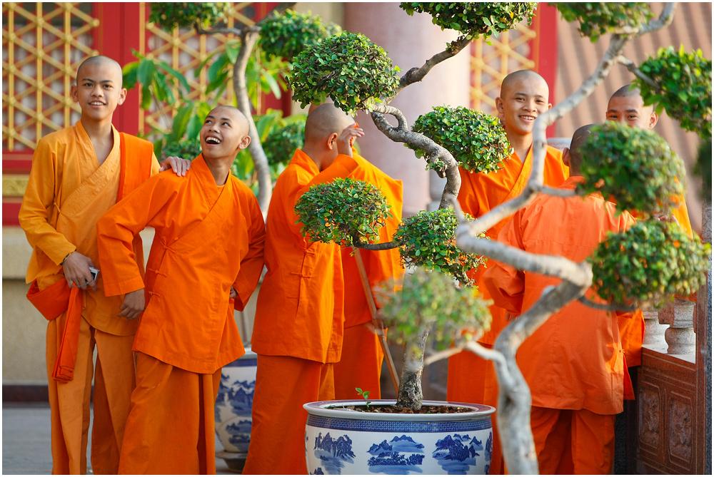 Ein Besuch im Tempel I
