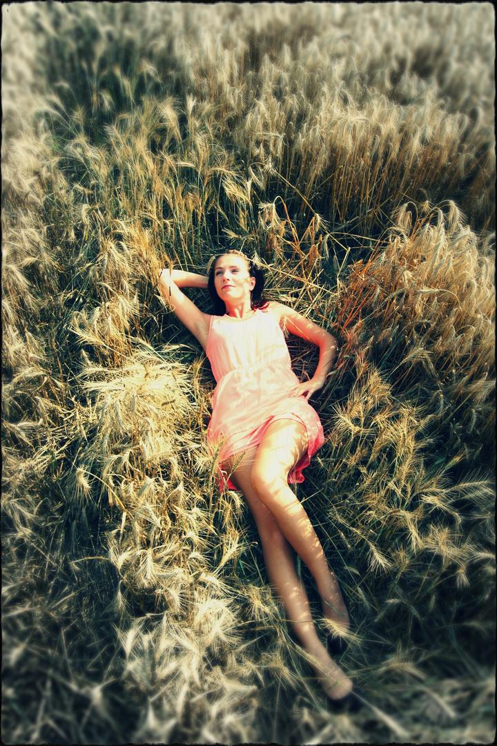 Ein Bett im Kornfeld..