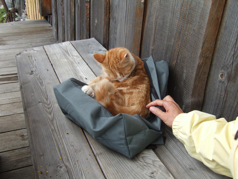 Ein Bett im Rucksack