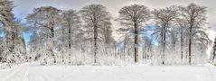 ***Ein Bisschen Winter***