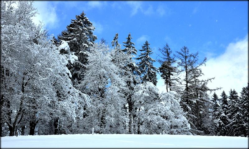Ein bisschen Winter