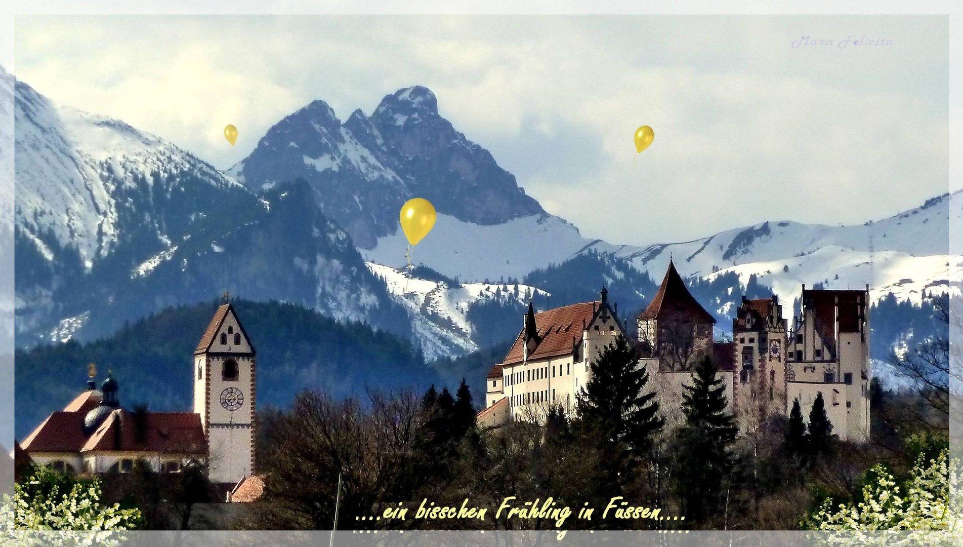 Ein bisserl Frühling in Füssen......