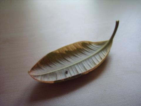 Ein Blatt
