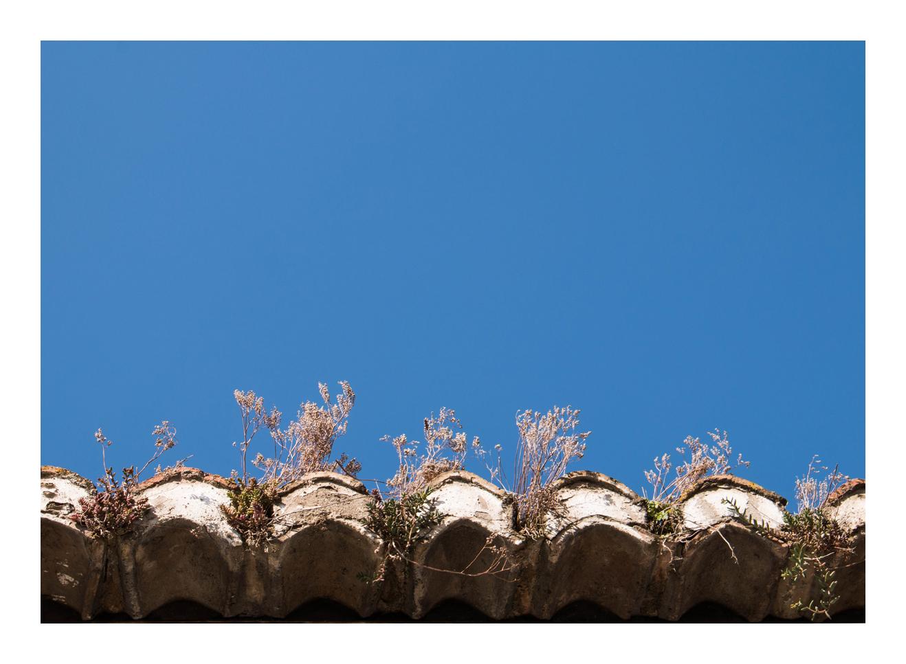 ein Blick auf das Dach