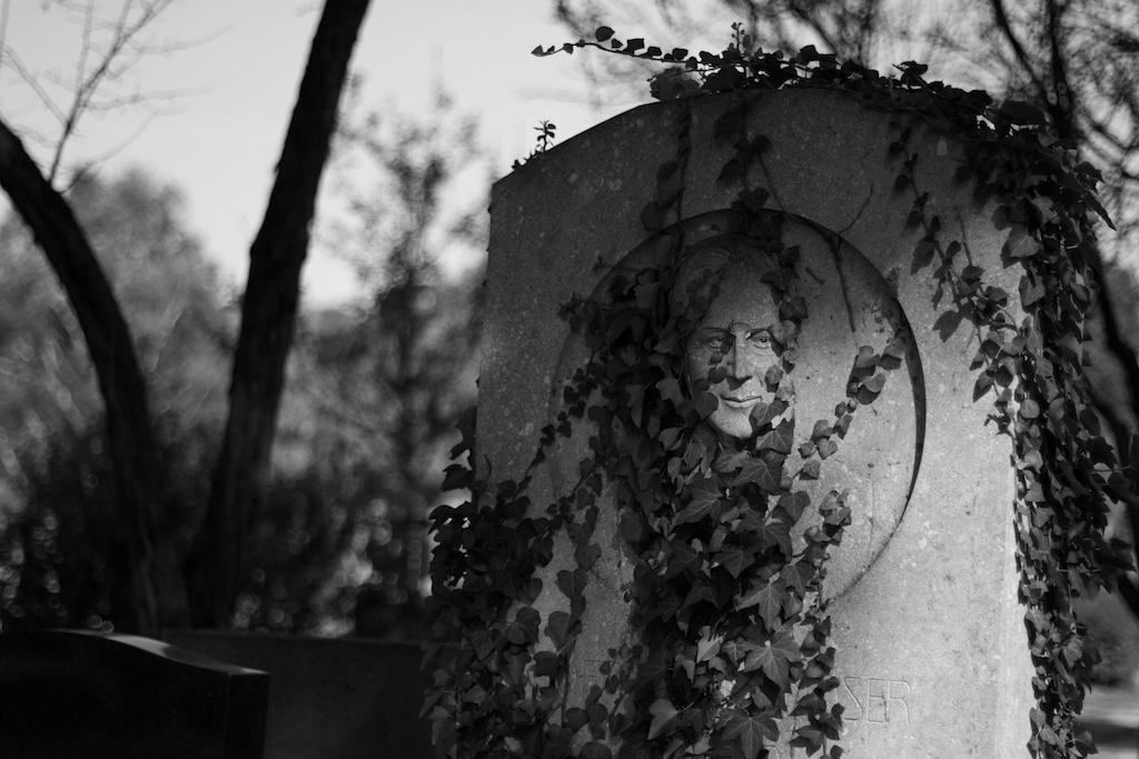 Ein Blick auf den Zentralfriedhof
