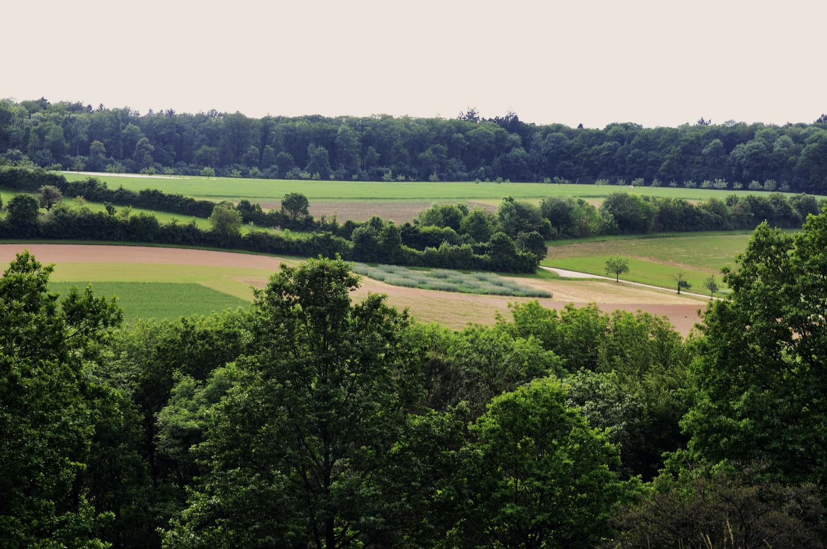 ein Blick auf die Felder in der Ferne
