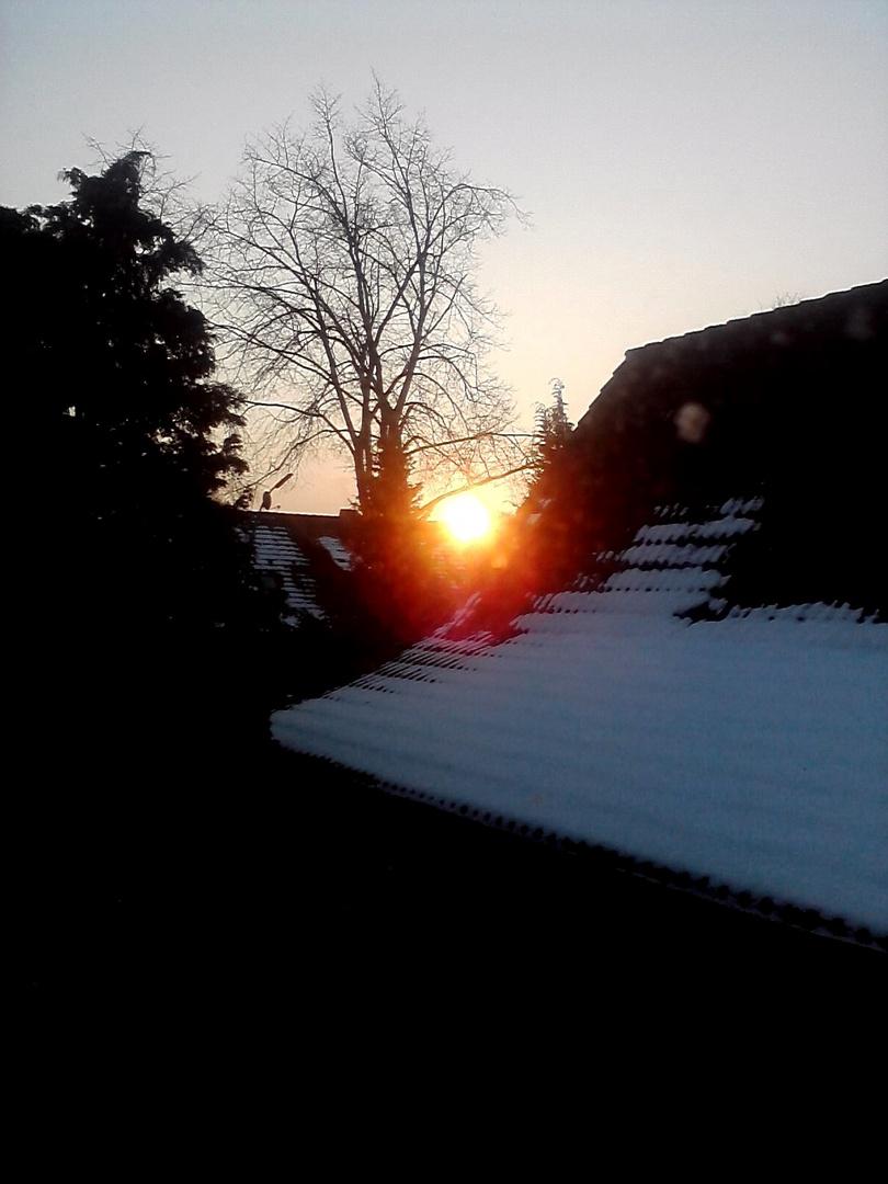 Ein Blick aus dem Fenster am frühen Morgen