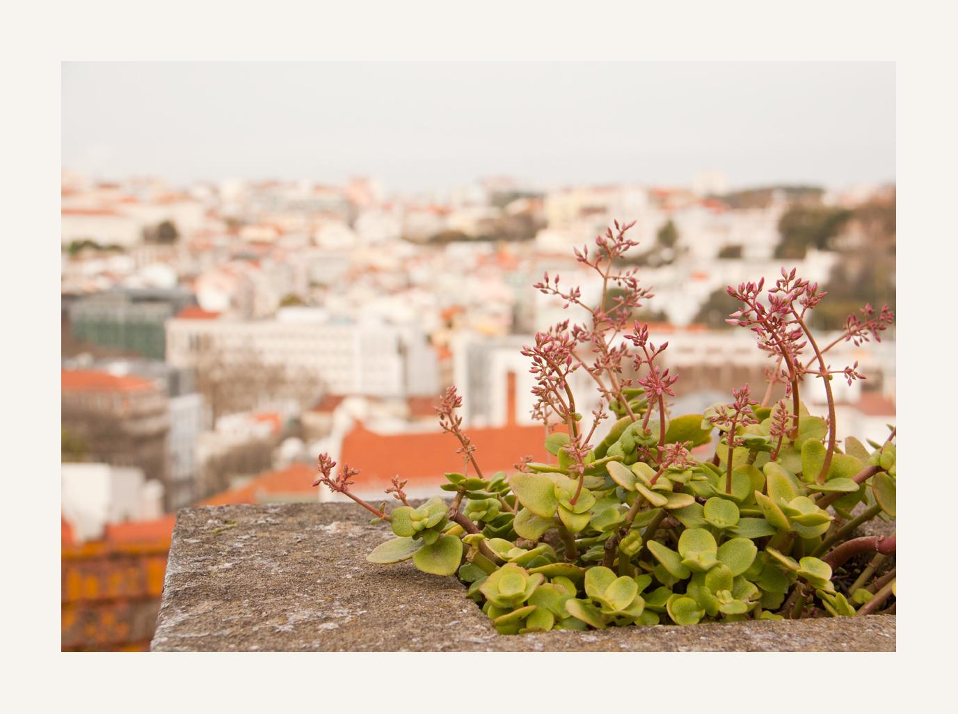 ein Blick über Lissabon
