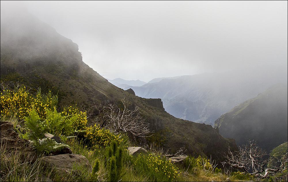 ein Blick zurück, am Weg zum Pico Ruivo
