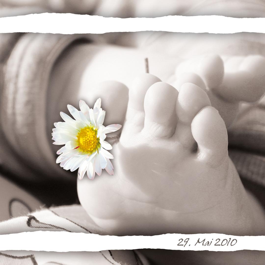 ein bl mchen f r dich foto bild kinder babies menschen bilder auf fotocommunity. Black Bedroom Furniture Sets. Home Design Ideas