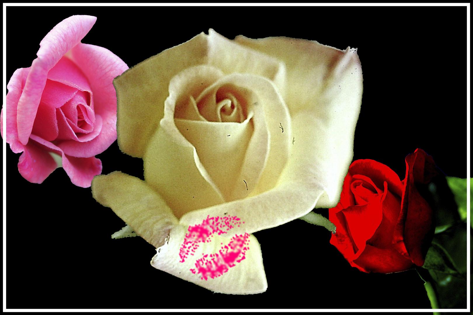 Ein Blumengruß zum Frauentag