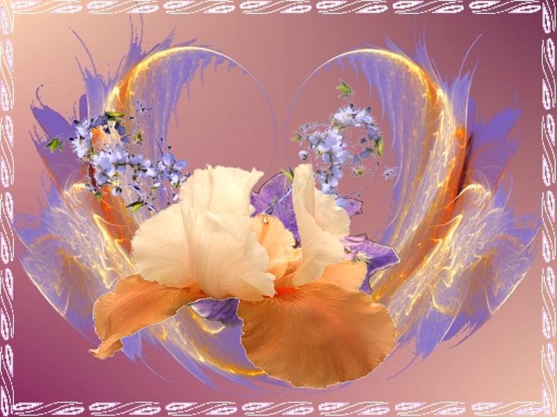 Ein Blumenkorb.jpg