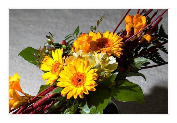 Ein Blumenstrauß für Dagmar