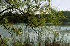 Ein Bochumer See