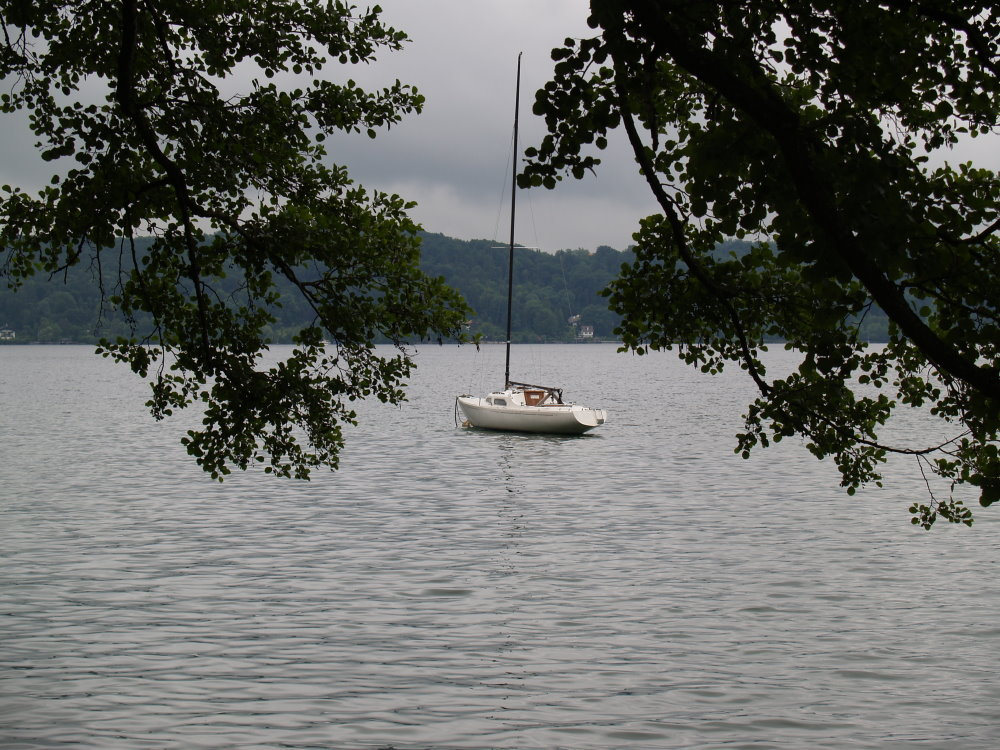 Ein Boot zwischen Bäumen