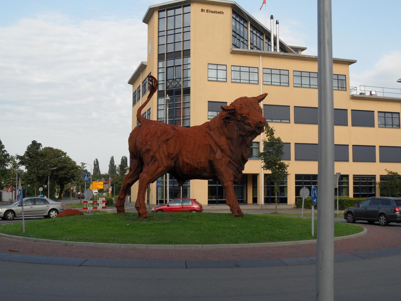 Ein Bulle auf der Verkehrsinsel