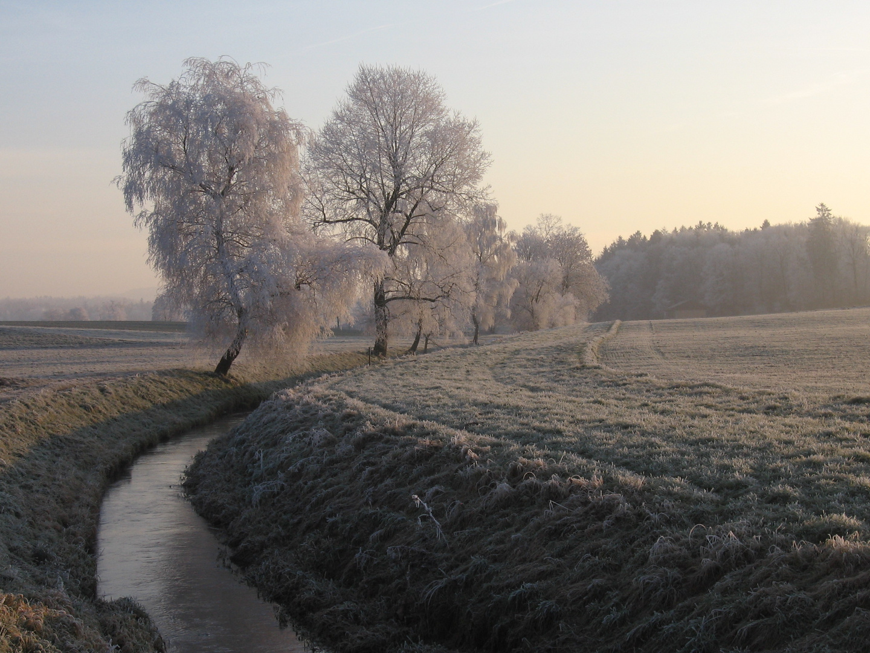 Ein eisiger Wintermorgen