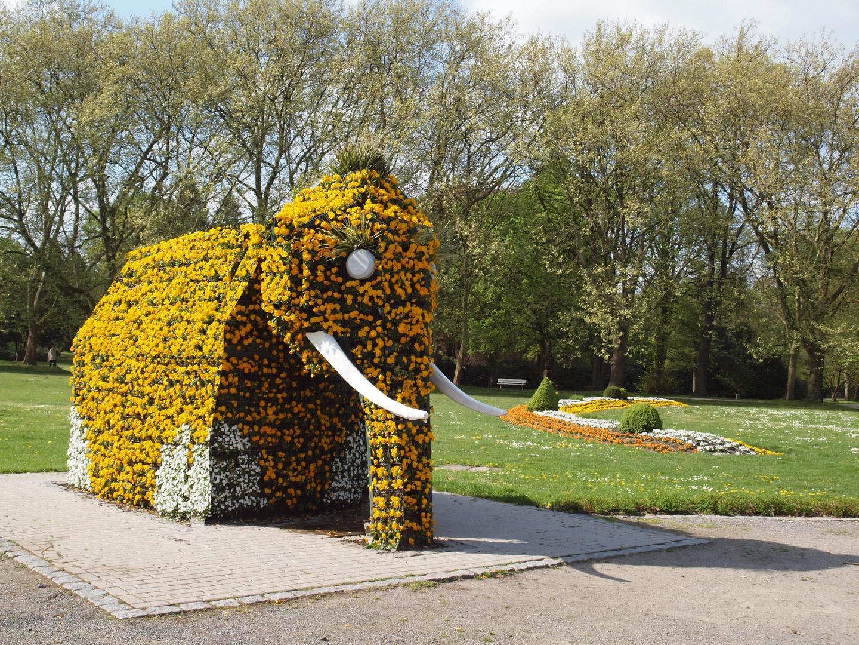 Ein Elefant aus Blumen