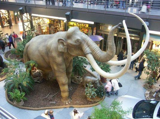 Ein Elefant im Porzellanladen.....