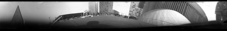Ein Elephant in der Stadt