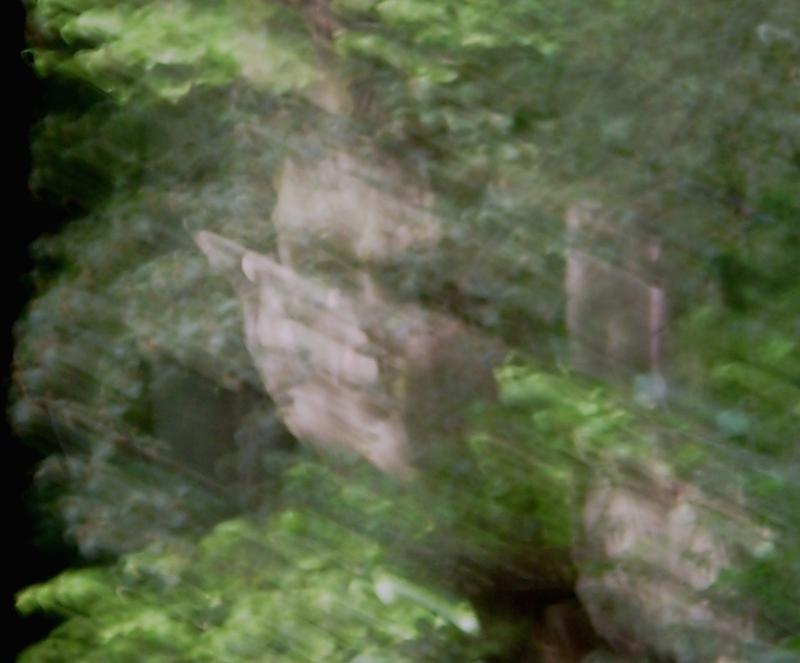 Ein Elfe und halbes gesicht ( u.Re )