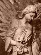 Ein Engel für Joy